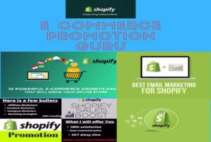 I will do consistent sales and roi shopify promotion for your ecommerce store